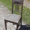 Tammest juugend tool